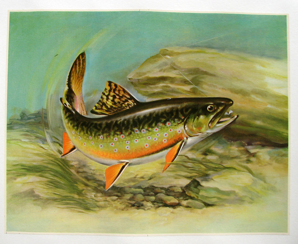 angry trout vintage poster