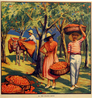1930's British Orange Grove Children's Vintage Poster