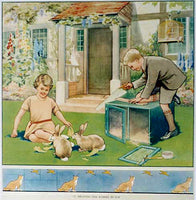 1930's Rabbit Hutch Vintage British Children's Poster