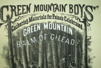 1868 Antique Vintage Vermont Medical Balm Of Gilead Poster