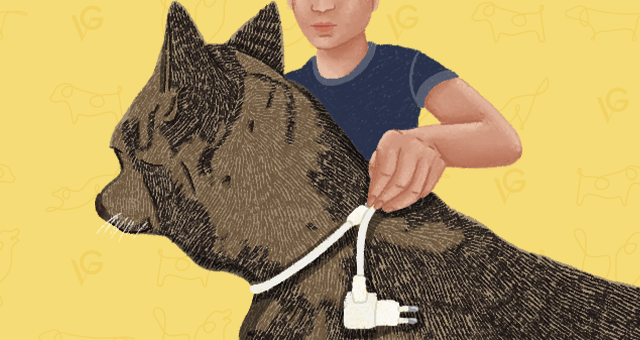 Charge cable dog neck measuring