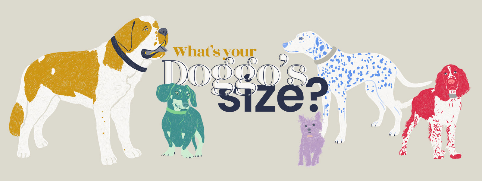 Valgray luxury dog accessory product sizing guide & sizing chart for all size dog collar blog banner. Image from The Valgray Collar Sizing Guide page.