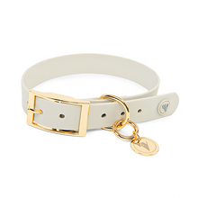Load image into Gallery viewer, Valgray Yellow Gold Waterproof Dog Collar for X-Large Dog Breeds