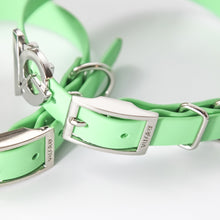 Load image into Gallery viewer, Valgray Premium Waterproof Dog Collar for Small Dogs - Pistachio & Silver