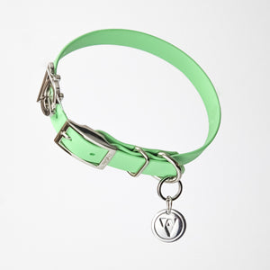 Valgray Premium Waterproof Dog Collar for Small Dogs - Pistachio & Silver