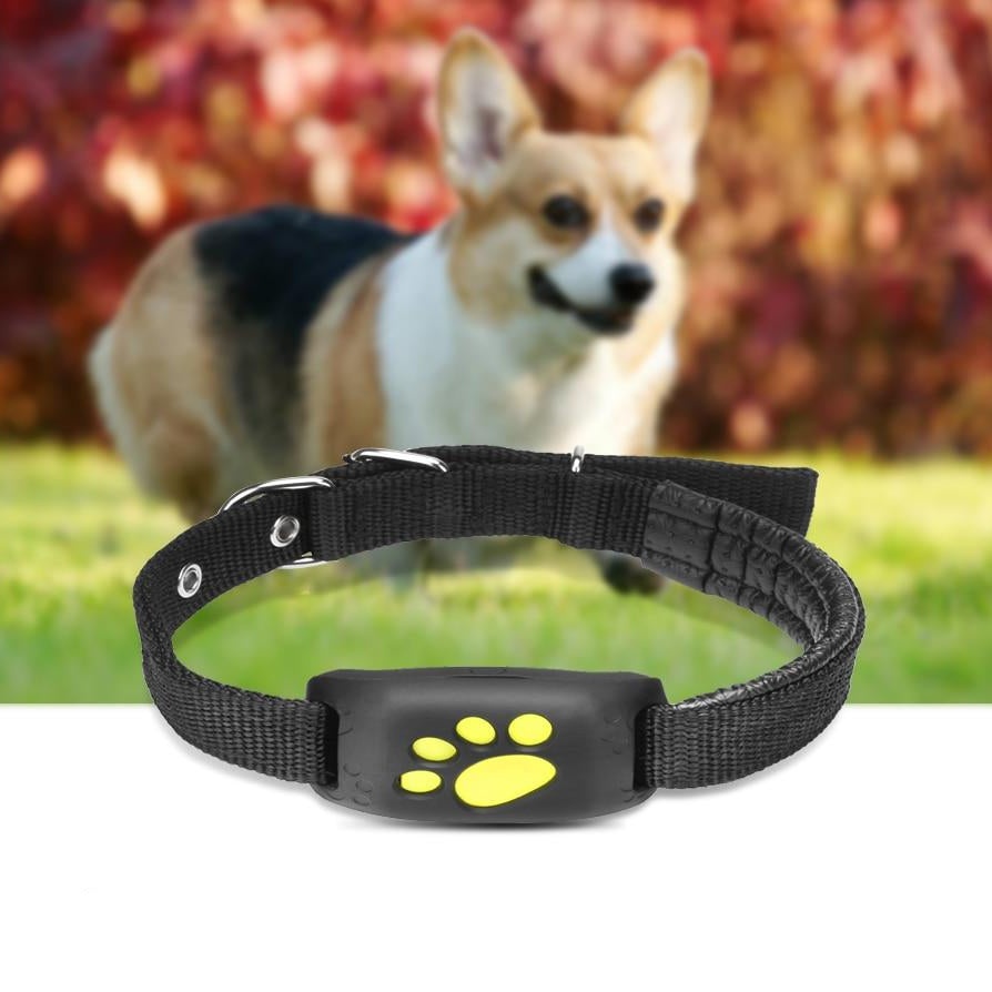 Z8 Pets GPS Tracker Dog Cat Collar GPS Tracker Waterproof - Smart GPS Trackers