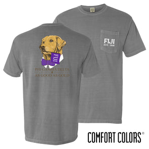 New! Fraternity Comfort Colors Retriever Flag Tee