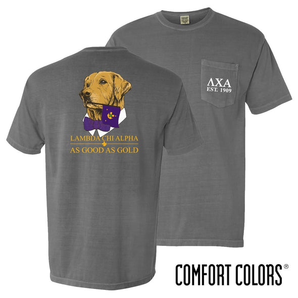 New! Lambda Chi Comfort Colors Retriever Flag Tee