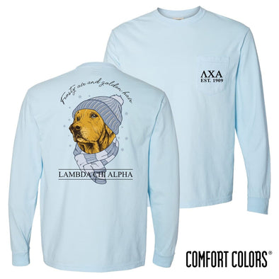 Lambda Chi Comfort Colors Winter Retriever Tee