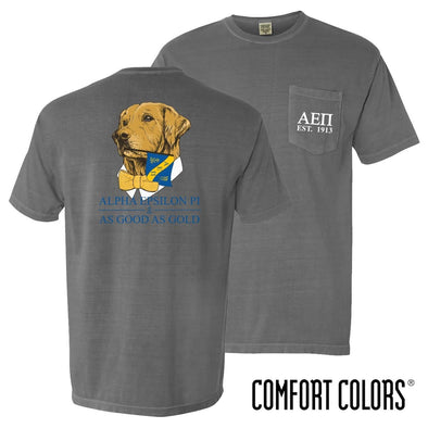 AEPi Comfort Colors Retriever Flag Tee