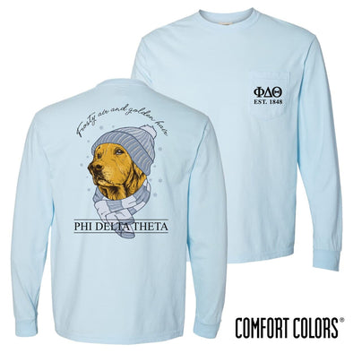 Phi Delt Comfort Colors Winter Retriever Tee