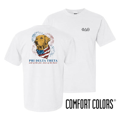 Phi Delt Comfort Colors USA Retriever Tee