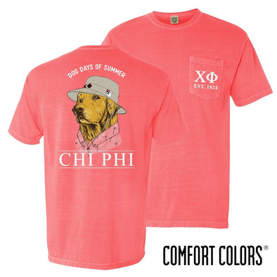 New! Chi Phi Comfort Colors Boonie Retriever Tee