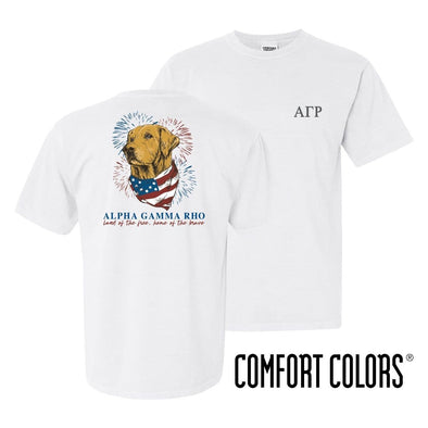 AGR Comfort Colors USA Retriever Tee