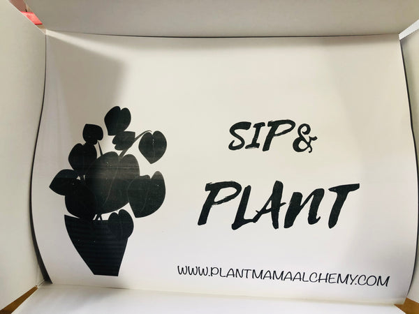 Sip & Plant Virtual Experience