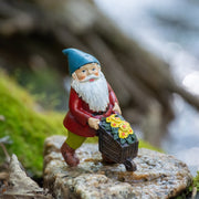 Gnome Collection - Set of Five