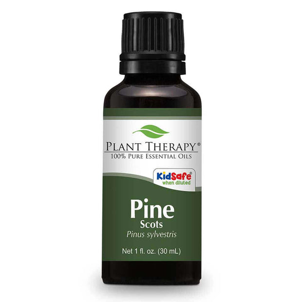 Pine Scots Essential Oil 10 ml and 30 ml