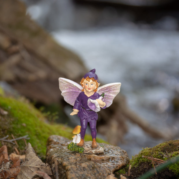 Fairy Boy, Purple
