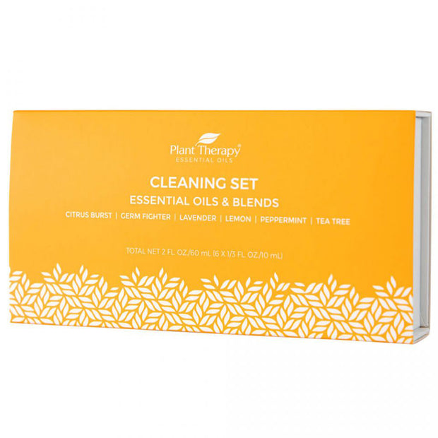 Essential Oil Cleaning Set
