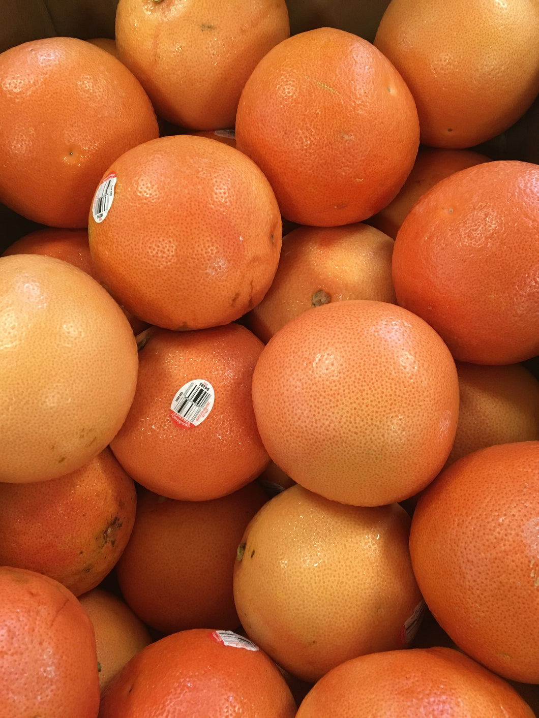 Organic Grapefruit by the pound