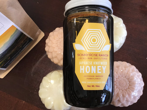 Raw Unfiltered Japanese Knotweed Honey
