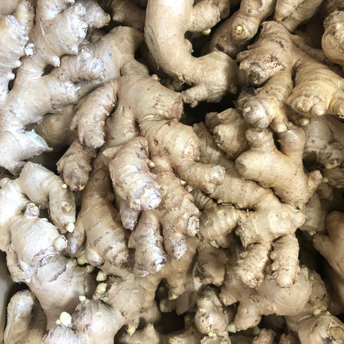 Organic Ginger Root by the pound