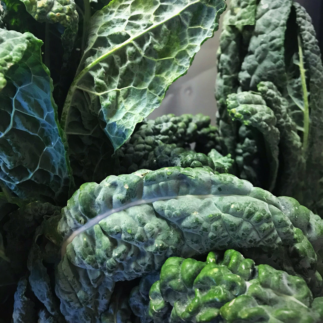 Organic Lacinato Kale by the bunch