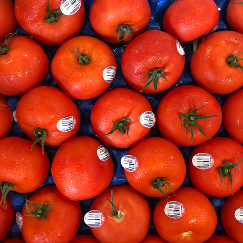 Organic Beefsteak Tomatoes by the pound