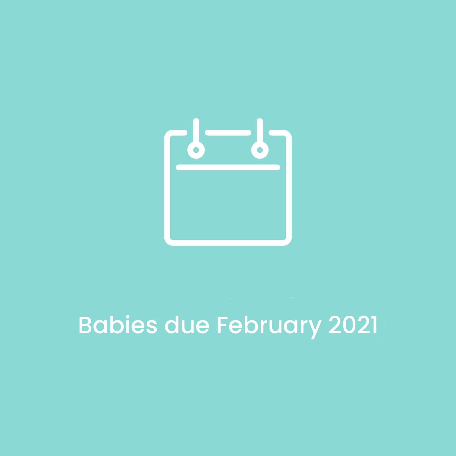 Babies due February 2021