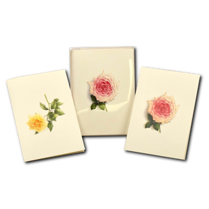 ES&W Boxed Cards Rose Assortment