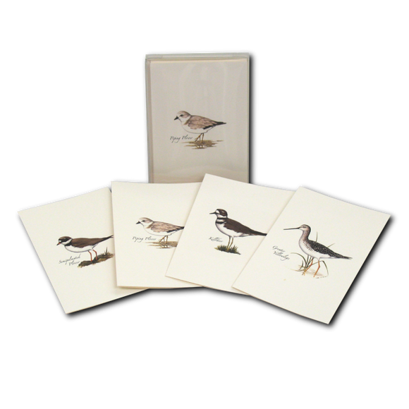 ES&W Boxed Cards Shorebird Assortment
