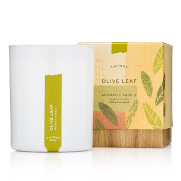 Thymes Olive Leaf Aromatic Candle