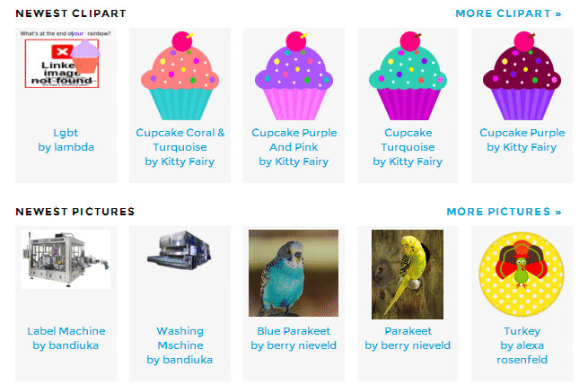 cupcakes and parakeets