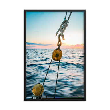 """Hooked In"" Framed Print - College Collections Art"