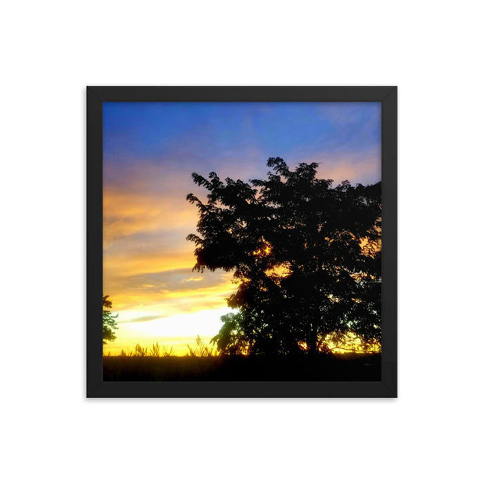"""Marsh Tree Sunset"" Framed poster - College Collections Art"
