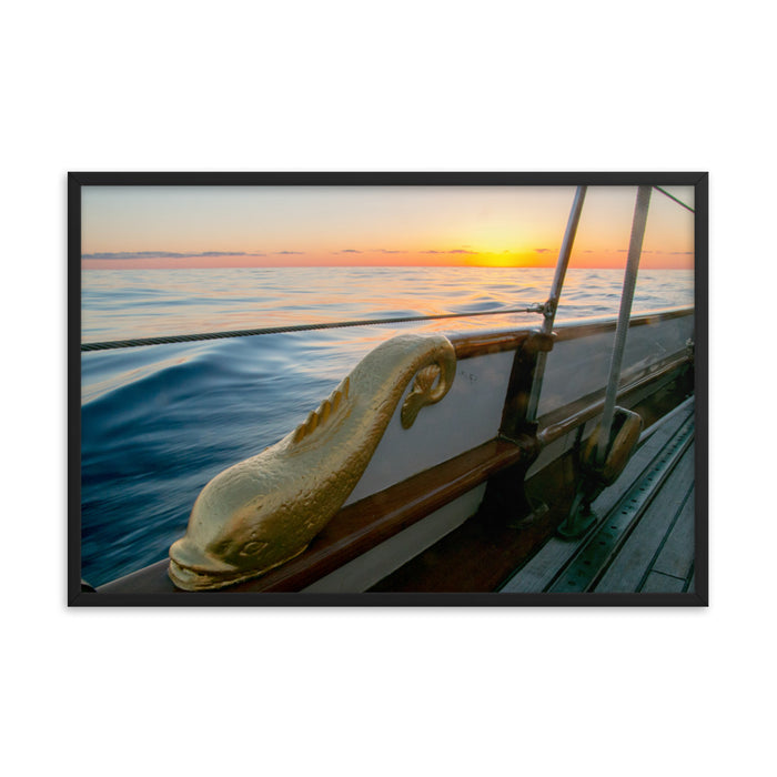 """Dolphin 2"" Framed Print - College Collections Art"