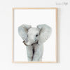Baby Jungle Animals | Set of 4 Prints Shipped