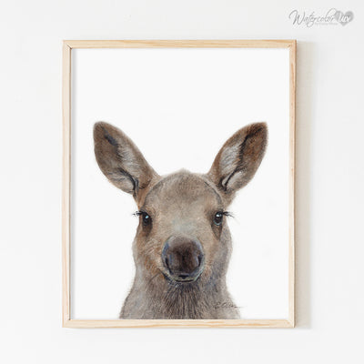 Baby Moose Shipped Print