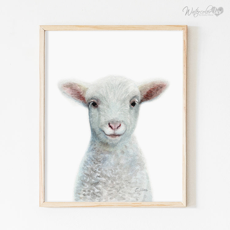 Baby Sheep Digital Print