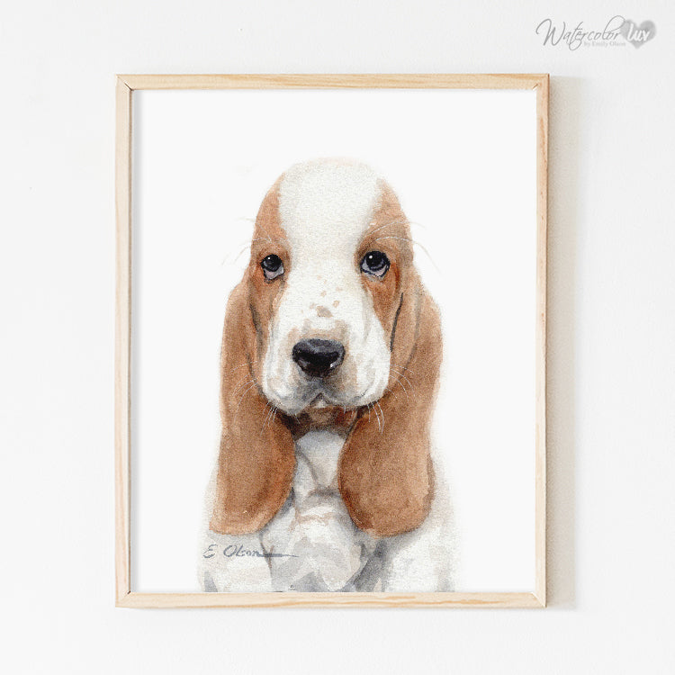 Basset Hound Puppy Digital Print