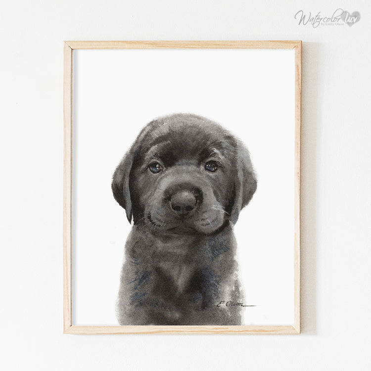 Black Labrador Retriever Puppy 2 Digital Print
