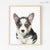 Black Corgi Puppy Digital Print