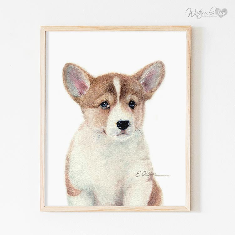 Corgi Puppy Digital Print