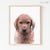 Fox Red Labrador Retriever Puppy Digital Print