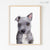 Grey Mixed Breed Puppy Digital Print