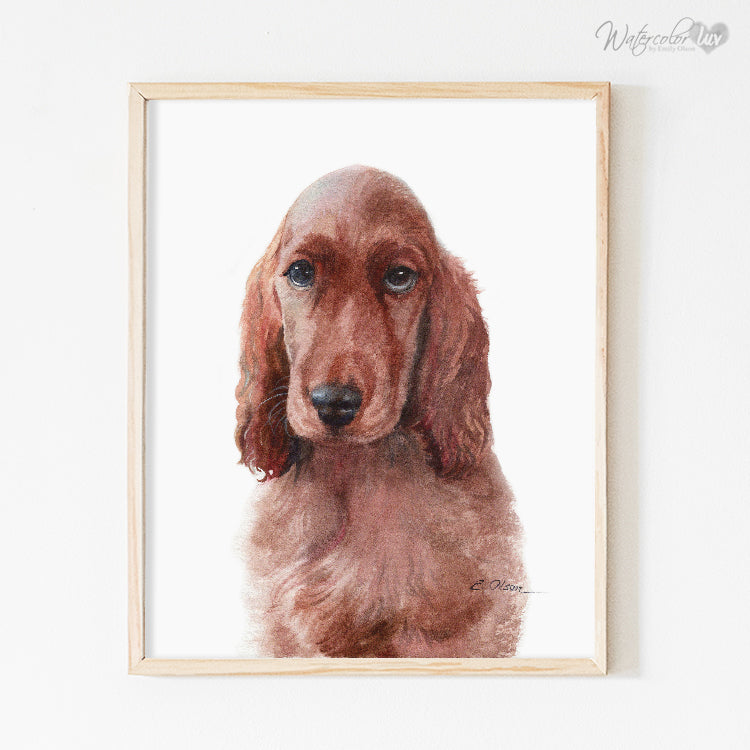 Irish Setter Puppy Digital Print