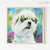 Maltese in Sunglasses Shipped Print