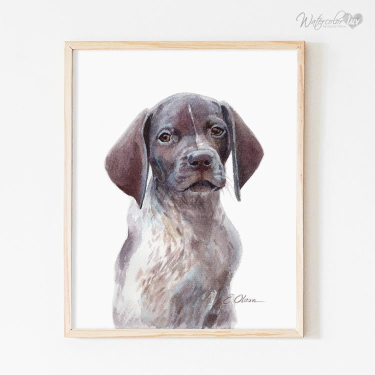 German Shorthaired Pointer Puppy Digital Print