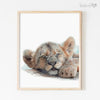 Sleeping Baby Lion Cub Digital Print