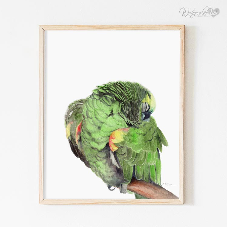 Sleeping Jungle Parrot Digital Print